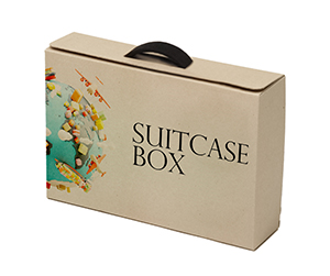 image of 3d Suitcase Boxes