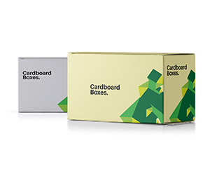 sample of printed Cardboard packaging Boxes