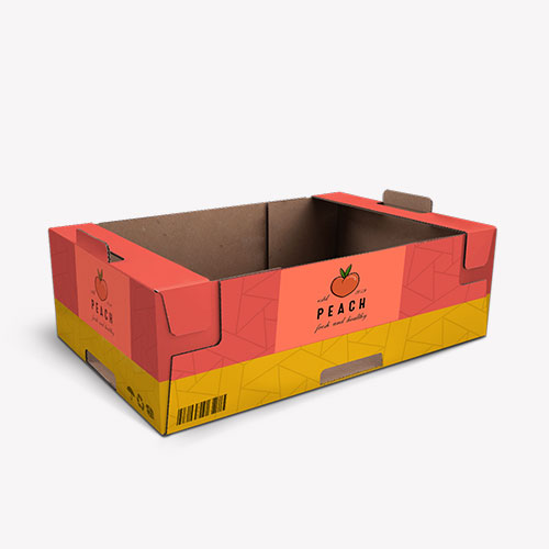 Cardboard Trays Packaging for Products
