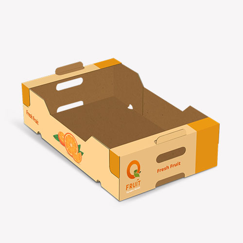 Cardboard Trays Packaging Ideas for Products