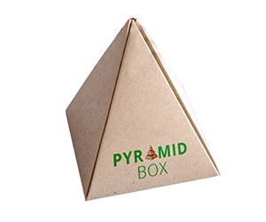 Corrugated and Kraft material Pyramid Boxes