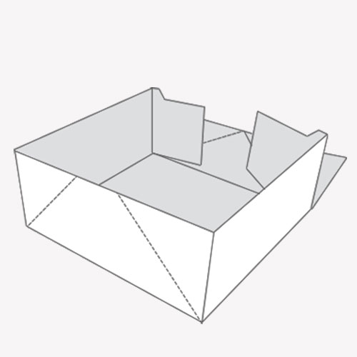 Four Corner Tray Packaging for products